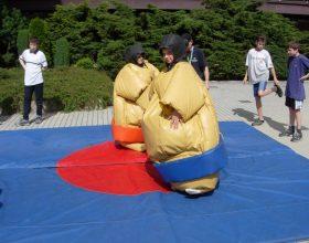 sumo ring pro děti