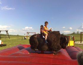 Rodeo show - elektrický bizon