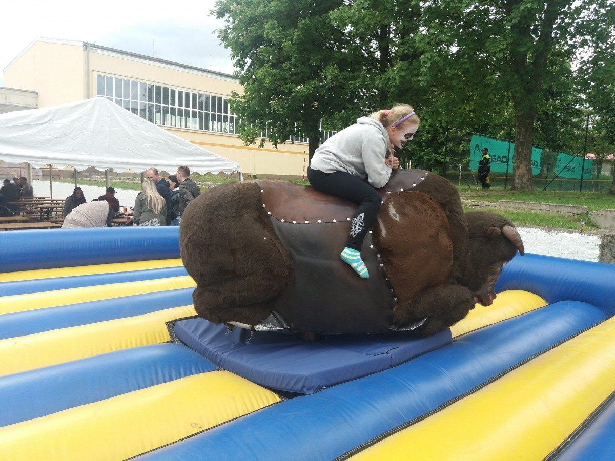 Rodeo bizon